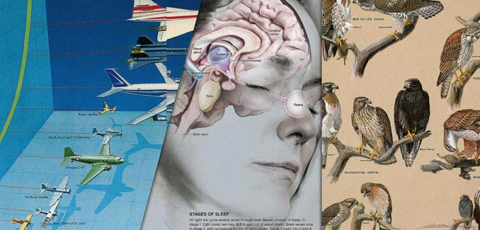 100 Years Of Infographics From National Geographic